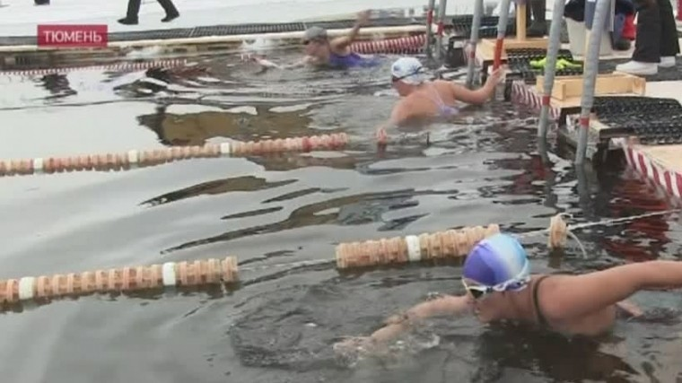 тюменские моржи открыли сезон плавания ледяной воде видео