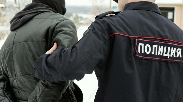 полиция москвы задержала массовой драке кафе