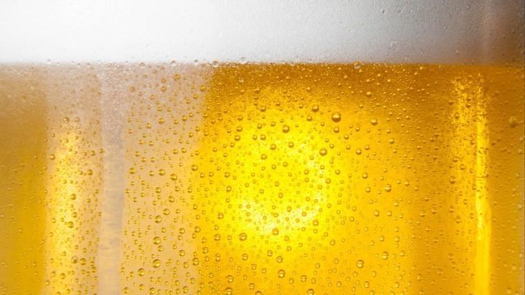 германии школьников учат пить пиво специальном уроке родители
