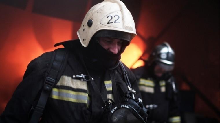 Впожаре под Красноярском погибли три человека