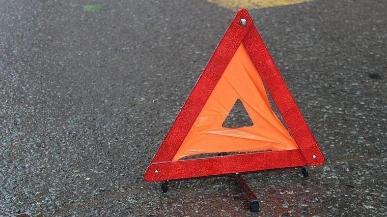 Маршрутное такси врезалось вдерево вПетербурге, есть пострадавшие