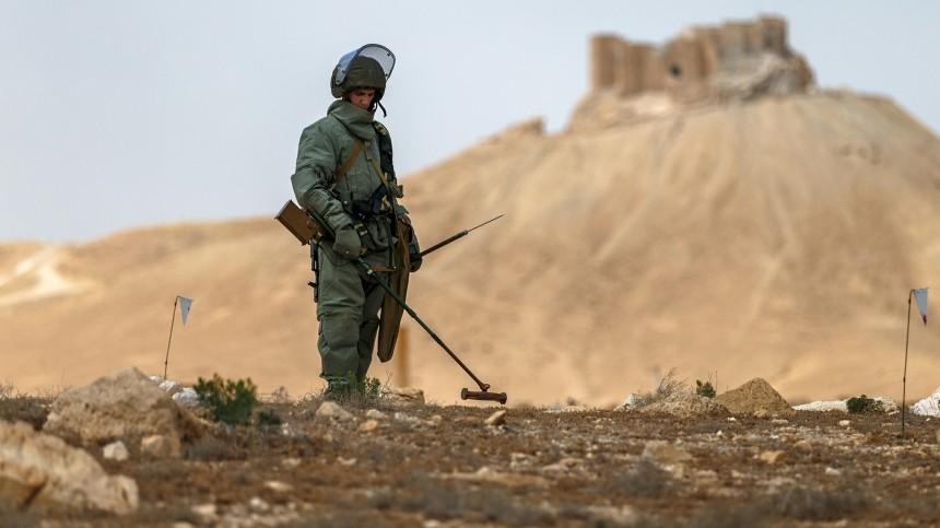 сирийские саперы военные ведут зачистку тайных складов боеприпасов