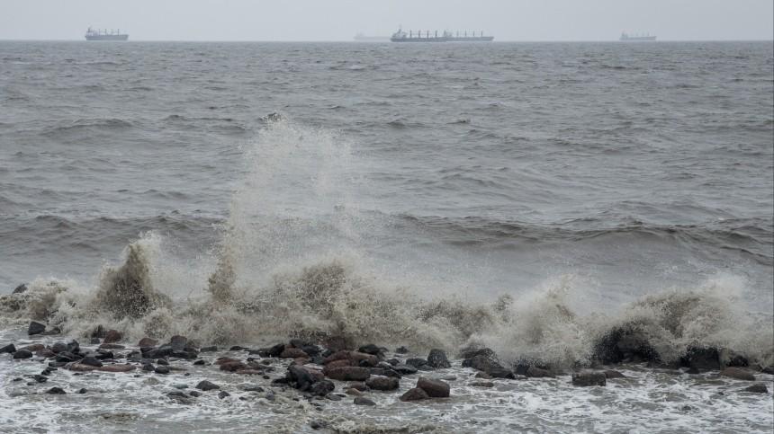 видео сотни иностранных шхун укрываются тайфуна бухтах приморья