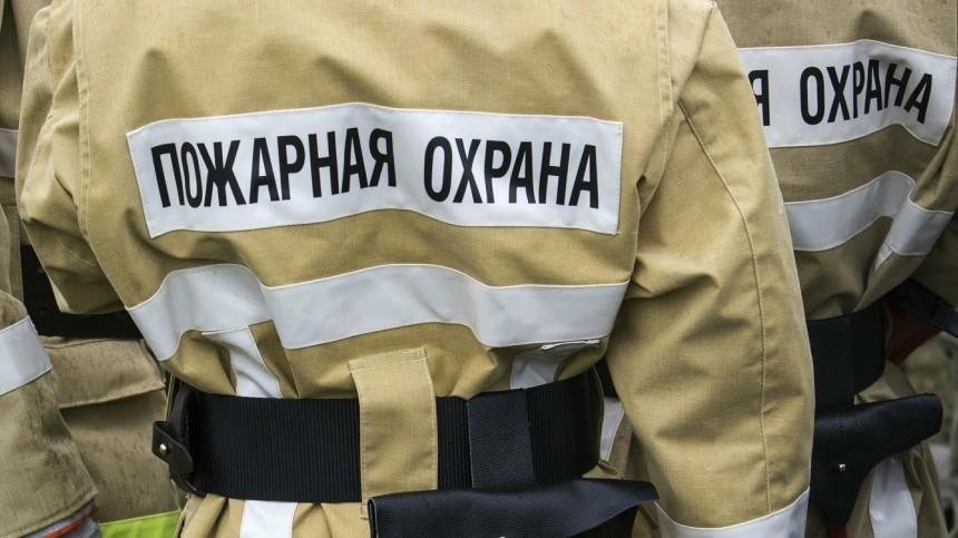 видео тело ребенка нашли пожара заброшенном ресторане татарстане