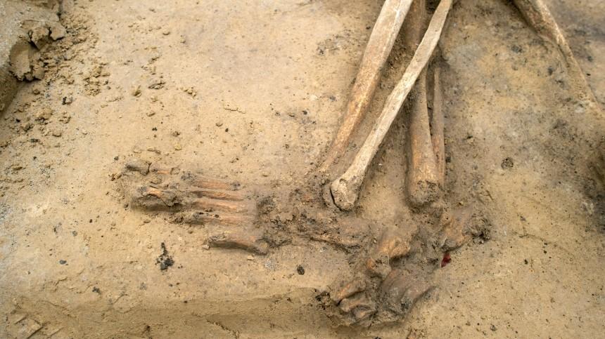 строительстве супермаркета алтайском крае нашли человеческие скелеты