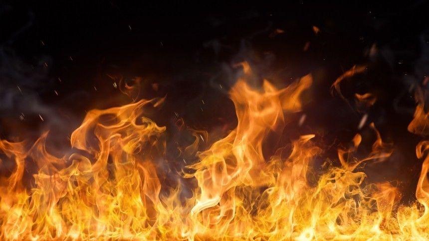 Видео: Сотрудники ДПС спасли людей изгорящего дома вПриморье