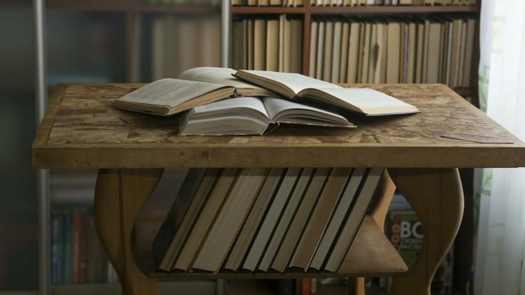 «Библиотеку вчемодане» показали вПетербурге