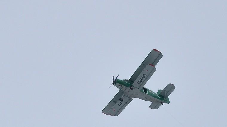 «Был шум, новсе молодцы»: пассажирка Ан-2 рассказала ожесткой посадке