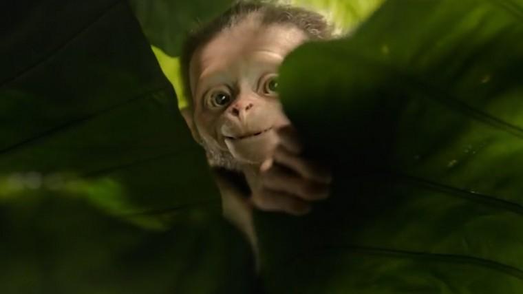 Всети появился трейлер фильма «Маугли» отЭнди Серкиса— видео