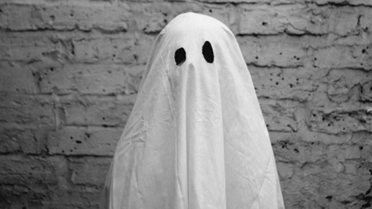 ВИталии задержан сотрудник музея, крадущий картины вобразе привидения