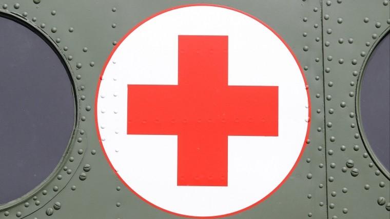 В Эстонии попросили убрать красный крест из спектакля про Айболита