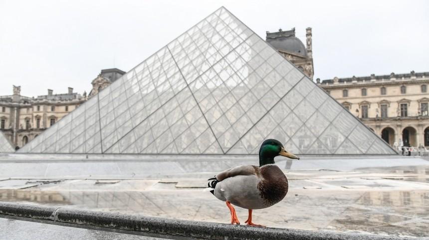 Парижский Лувр кконцу года переведет продажу билетов винтернет