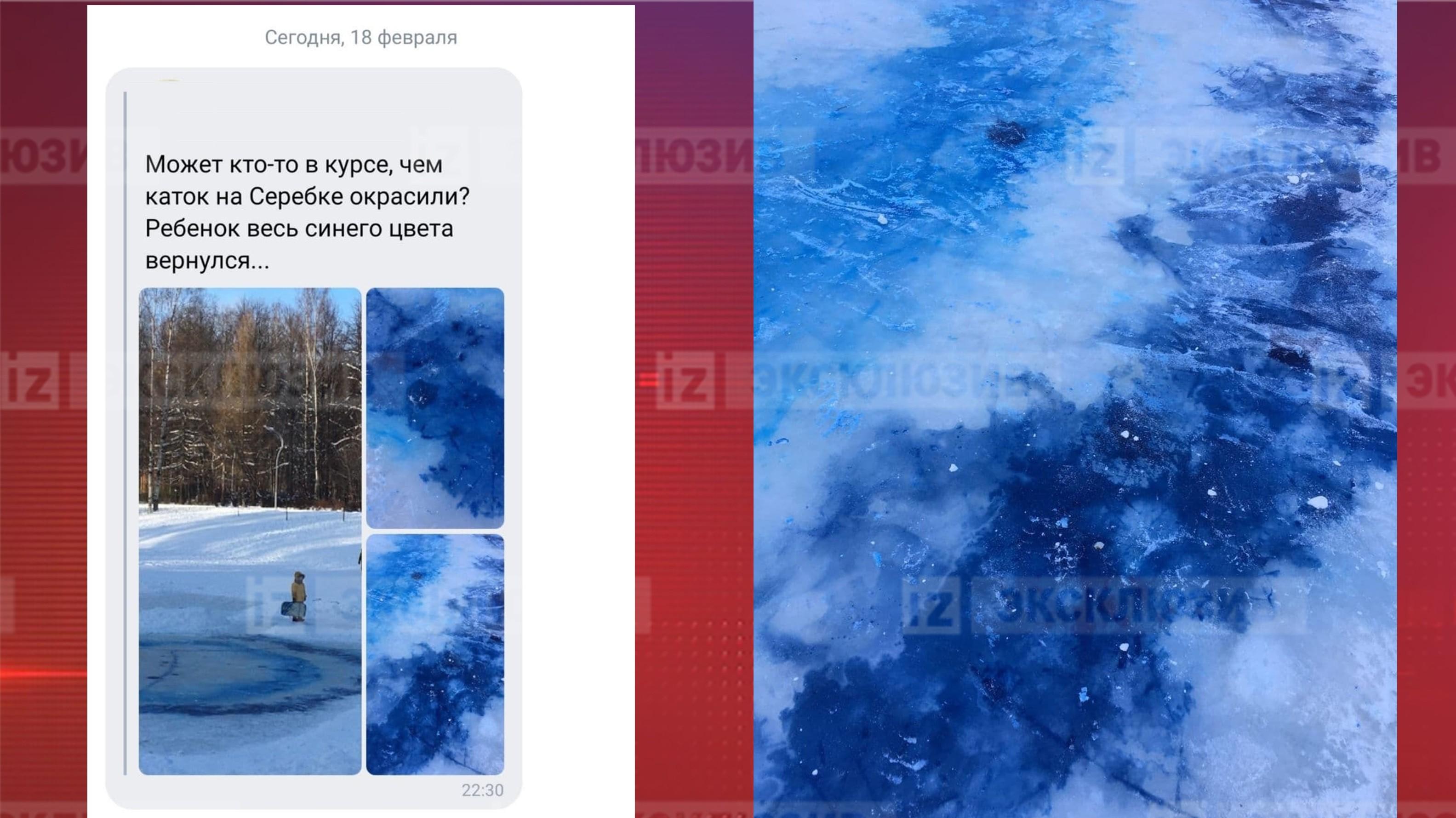 «Ребенок весь синий пришел»: как лед напруду вПетербурге поменял цвет— видео
