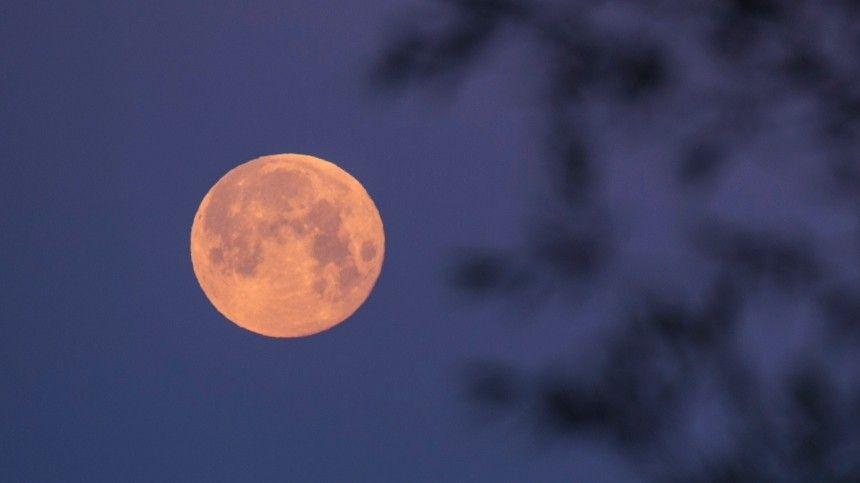 Астрологи рассказали, для кого полная Луна— подарок, адля кого— испытание. Жители Земли смогут наблюдать это явление 21сентября 2021 года.