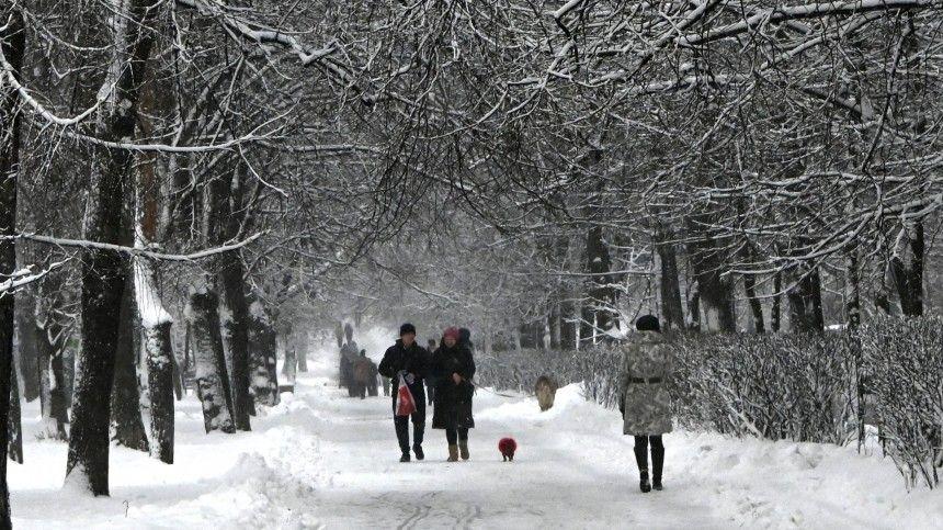 В Гидрометцентре рассказали, когда в европейскую часть России придут морозы