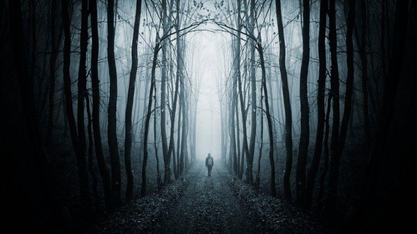 Двое из трех детей, брошенных матерью на морозе в лесу, переведены из…
