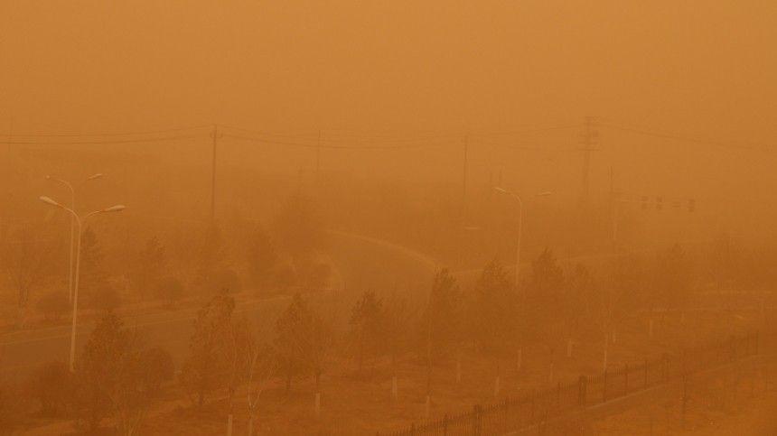 Эффект Polaroid: цвет неба в Петербурге может сильно…