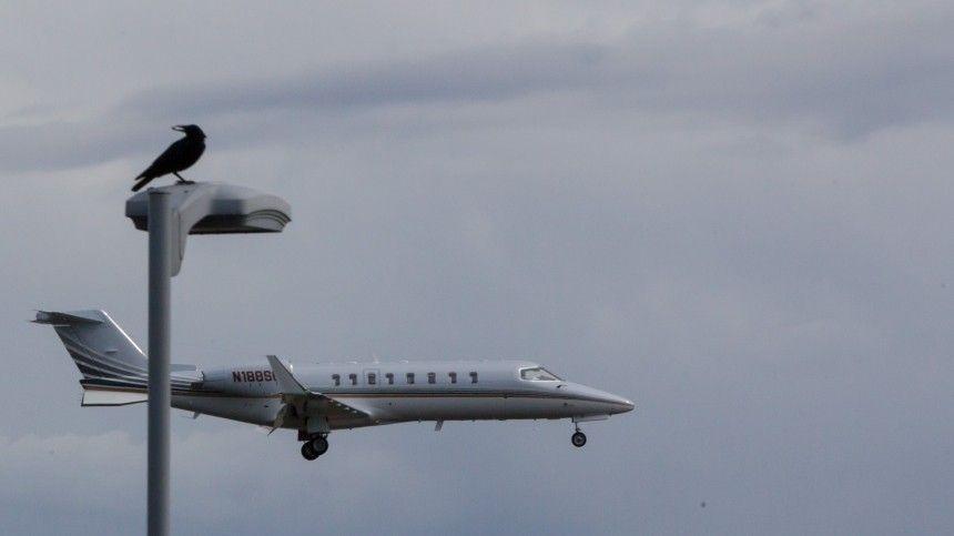 Семь человек погибли при крушении самолета ВВС…