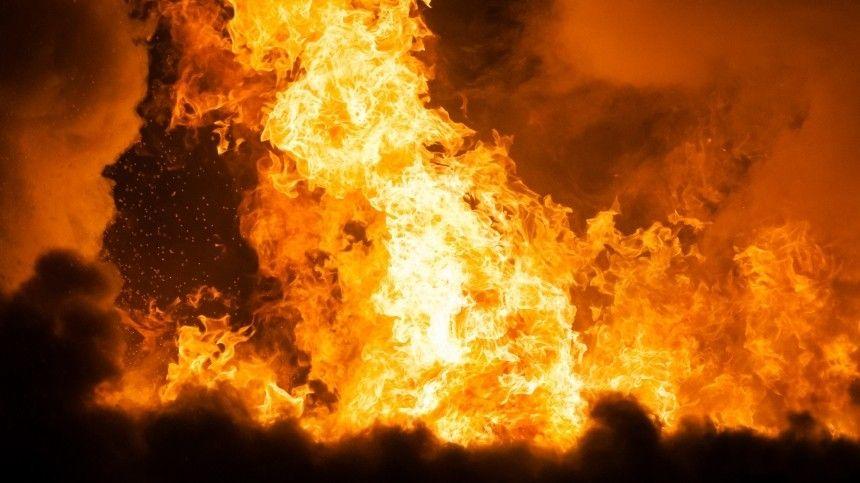 Сторож рыбзавода на Камчатке несколько раз ударил ножом и сжег…