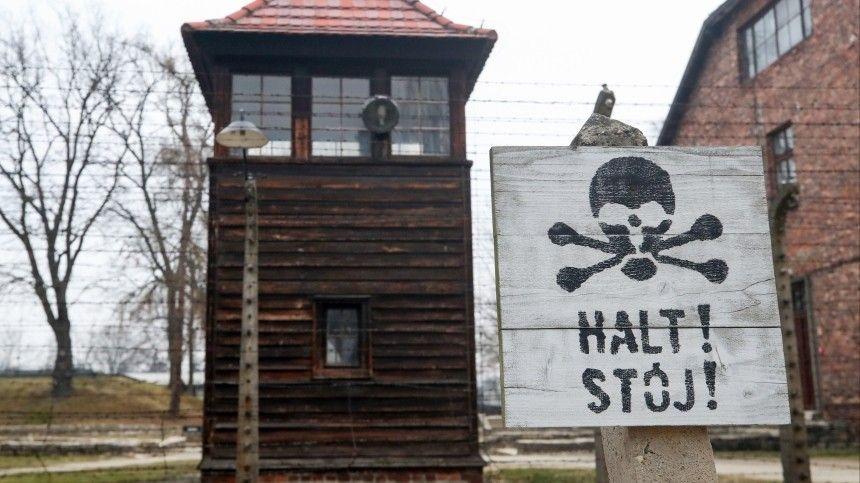 Германия впервые начала расследовать геноцид советских военнопленных …