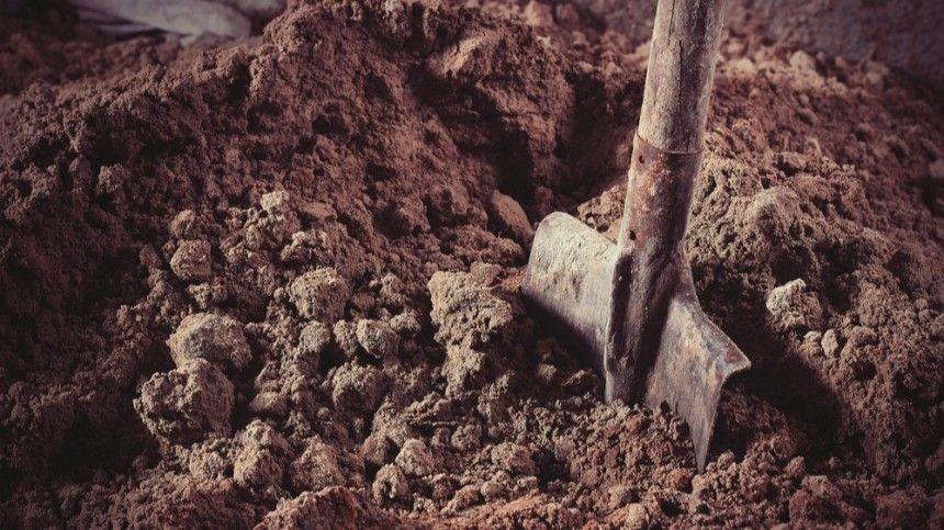 Житель Ленобласти закопал тело жены в парнике рядом с…