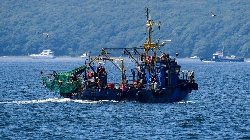 Насегодняшний день это самая дешевая изпромысловых рыб вРФ.