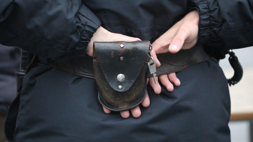 Полиция задержала подозреваемых по делу о крупном хищении в ПАО Россети