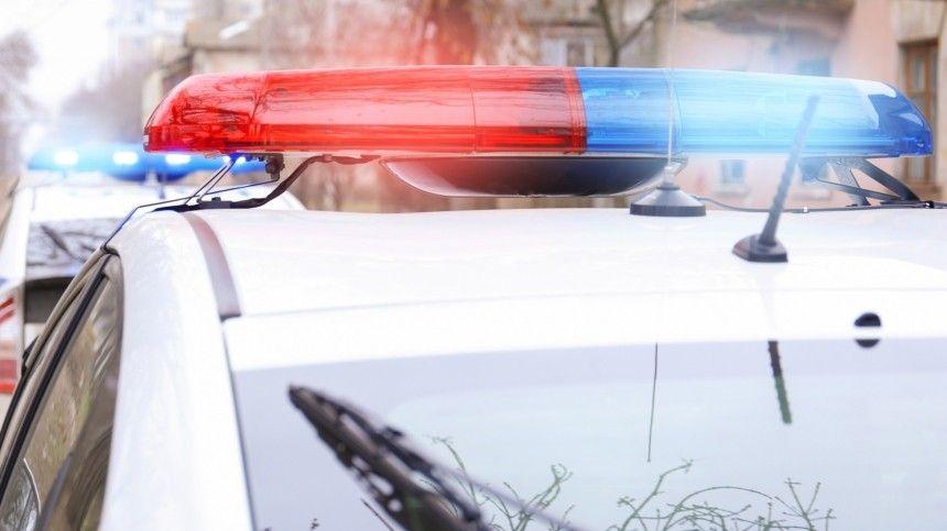 Человеческие останки были обнаружены недалеко отавтобусной остановки вЮжно-Приморском парке Северной столицы.