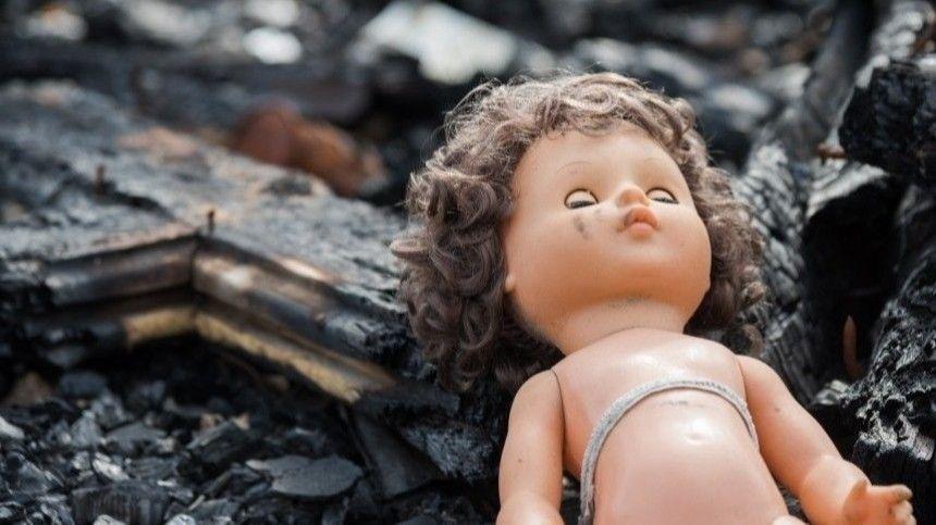 Человеческие останки были найдены недалеко отавтобусной остановки вЮжно-Приморском парке Северной столицы.
