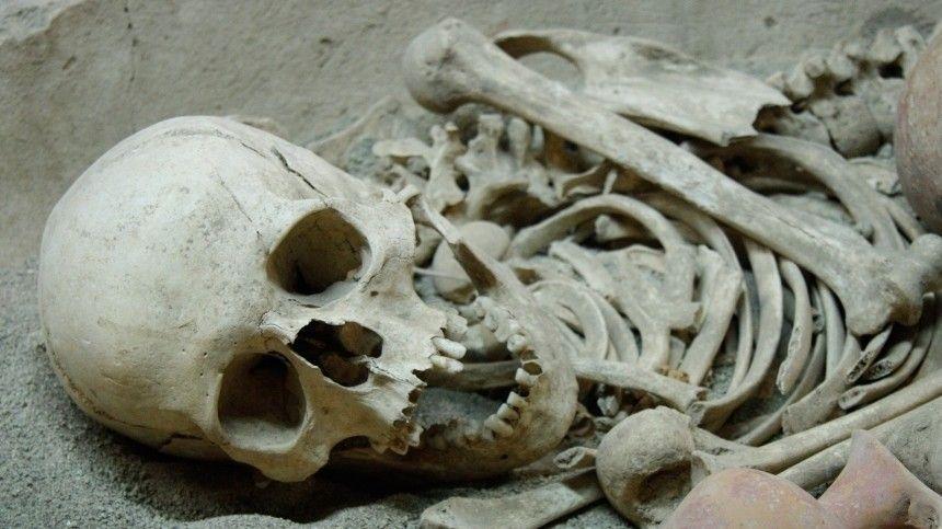 Свалку человеческих останков обнаружили в Иркутске