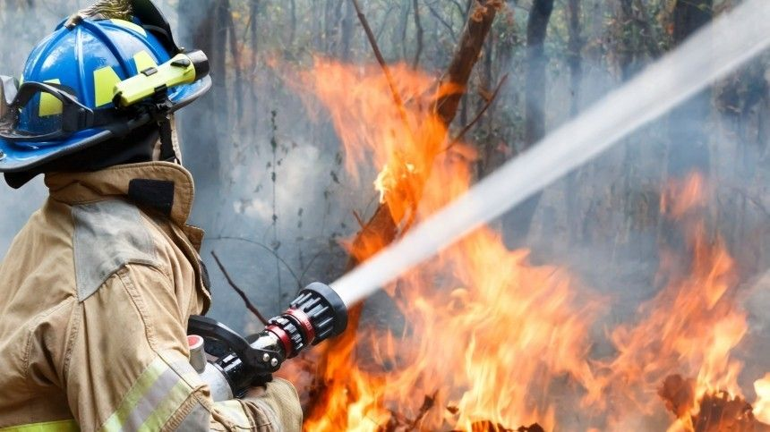 Ранняя весна ускорила начало пожароопасного сезона в РФ