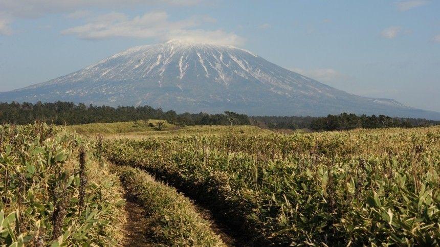 Японцы оценили фильм с неудобной правдой об острове Кунашир