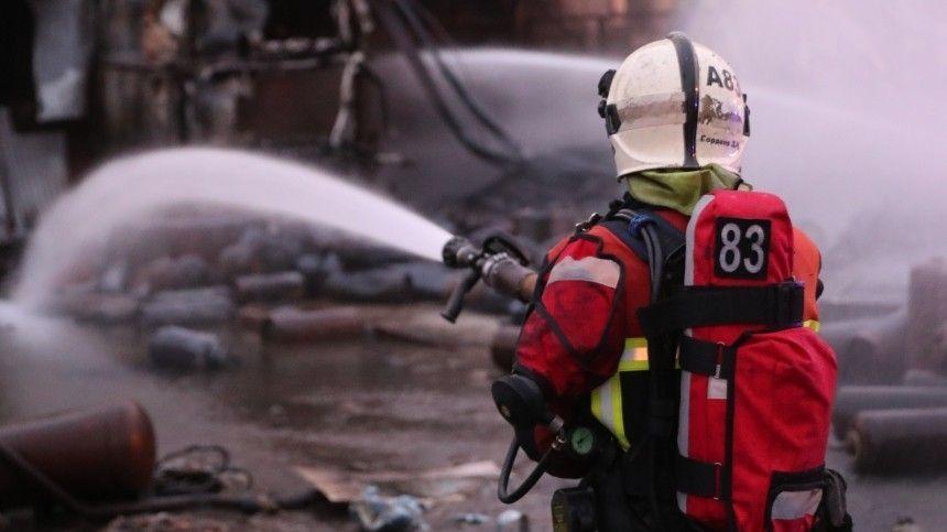 Двое детей и их мать сгорели в бане в Подмосковье