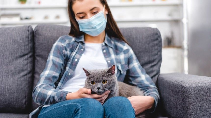 Поданным исследователей, подхватить инфекцию могут норки, кошки и, предположительно, свиньи.
