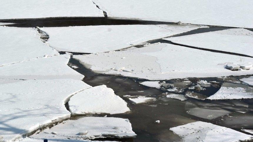 Юные мореплаватели: троих детей спасатели сняли со льдины в Челябинской области