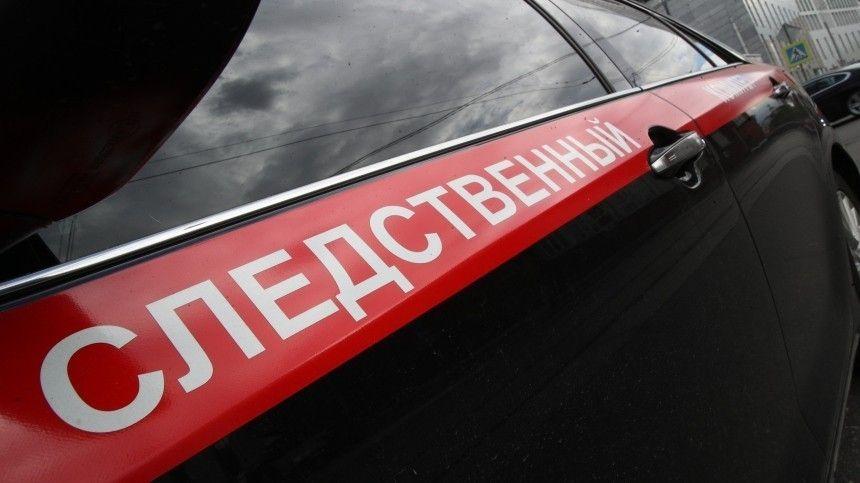 Пофакту случившегося впоселке Оредеж вЛужском районе Ленинградской области было возбуждено уголовное дело.