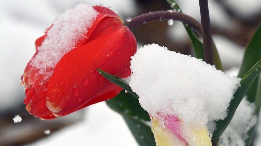И снова холода: когда россиянам ждать заморозков