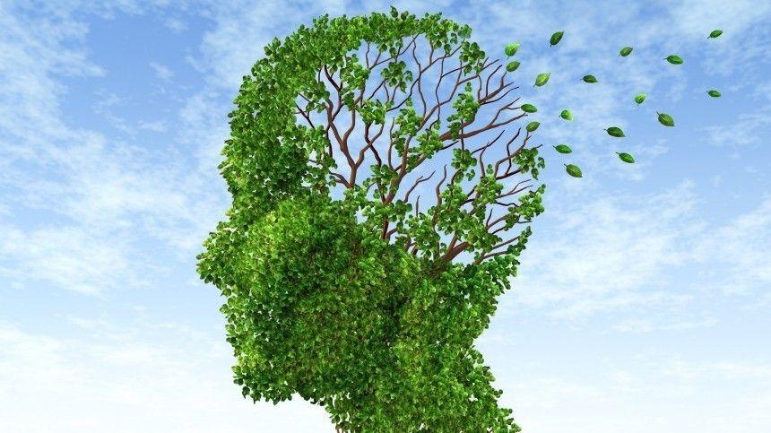 Специалисты также сообщили, вкаком возрасте ииз-за чего может начаться развитие болезни Альцгеймера.