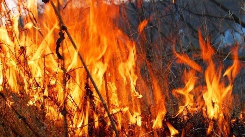 Даже там, где открытого горения нет, людям недает вздохнуть ядовитый смог.