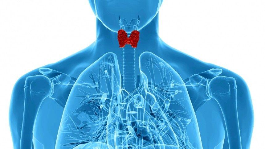 К каким смертельным осложнениям могут привести заболевания щитовидной железы