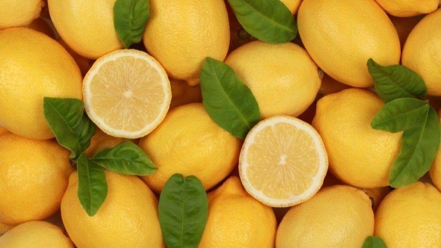 Лимон— помощник инакухне, ивпоездке наприроду!