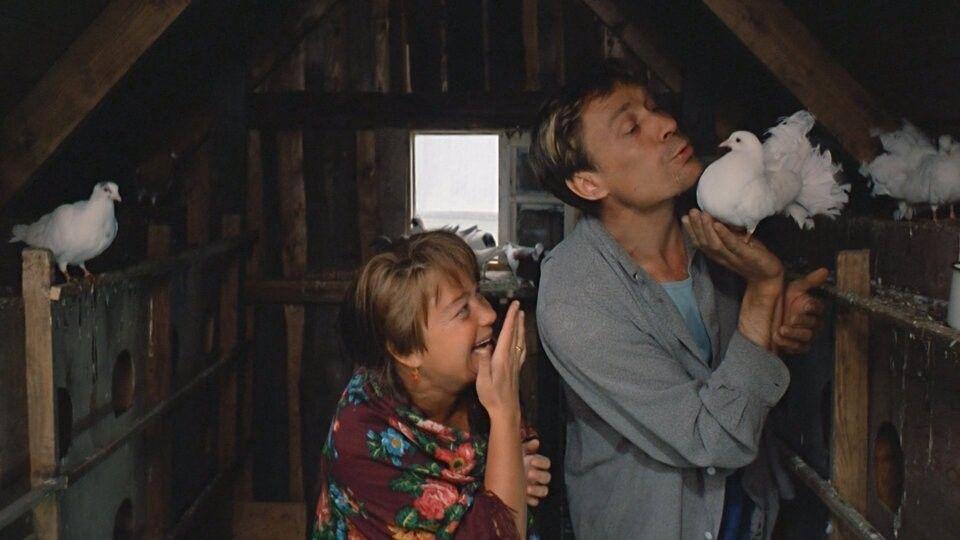 Как Александр Михайлов чуть непогиб насъемках фильма ипочему «Любовь иголуби» неразрешали показывать зрителям?
