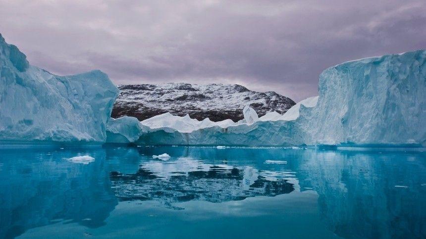 В Общественной палате рассказали о целях и задачах проекта Чистая Арктика