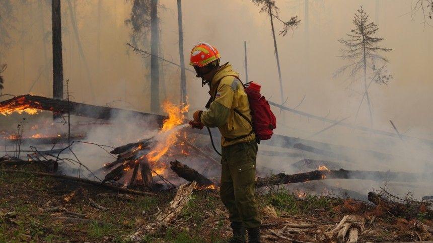 Ситуация накалена до предела: авиация вступила в борьбу с лесными пожарами в Якутии