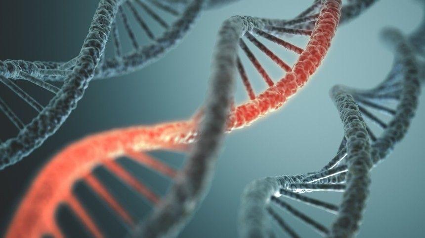 Исследователи полагают, что столкнулись сновой формой внехромосомной наследственности.
