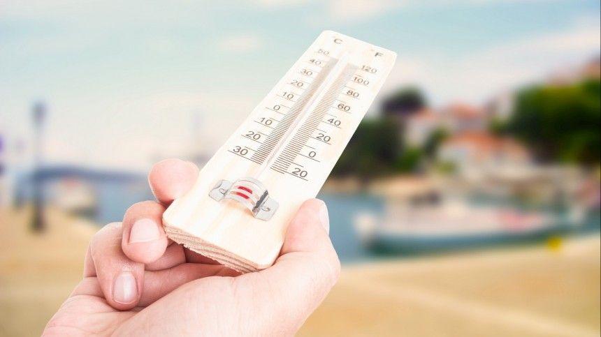 Готовность номер один: На какие регионы РФ обрушится новая волна аномальной жары
