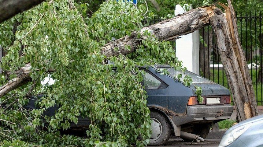 Конец света: очередной ураган обрушился наСаратовскую область