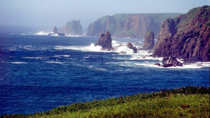Президент РФанонсировал «уникальные ибеспрецедентные» предложения пововлечению Японии вэкономическую деятельность островов.