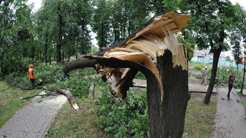 Последствия непогоды впоселке Новоорск шокировали местных жителей.