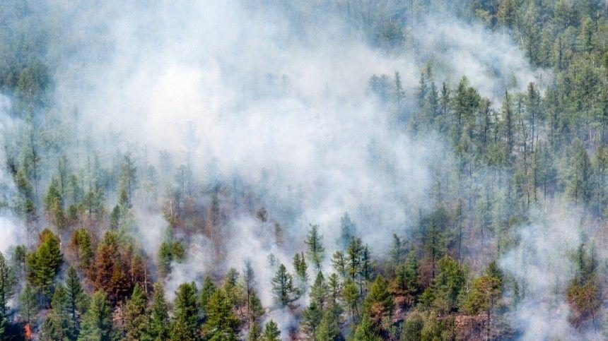 Доброволец погиб при тушении природного пожара в Оренбургской области